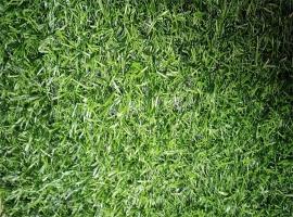 万盛假草坪